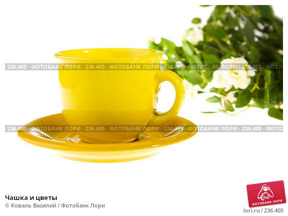 Купить «Чашка и цветы», фото № 236405, снято 27 мая 2018 г. (c) Коваль Василий / Фотобанк Лори