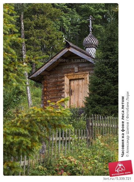 Часовня на фоне леса летом. Стоковое фото, фотограф Александр Шипов / Фотобанк Лори