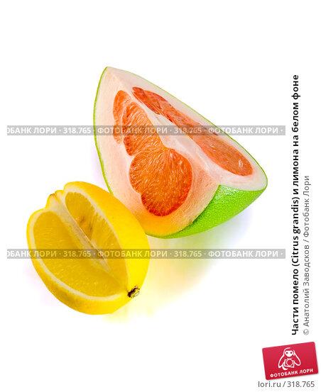 Части помело (Citrus grandis) и лимона на белом фоне, фото № 318765, снято 3 февраля 2007 г. (c) Анатолий Заводсков / Фотобанк Лори