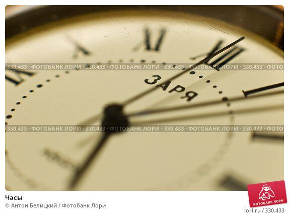 Купить «Часы», фото № 330433, снято 22 июня 2008 г. (c) Антон Белицкий / Фотобанк Лори