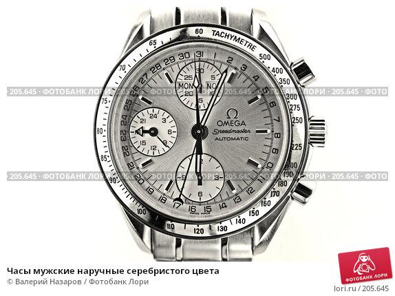 Часы мужские наручные серебристого цвета, фото № 205645, снято 4 февраля 2008 г. (c) Валерий Назаров / Фотобанк Лори
