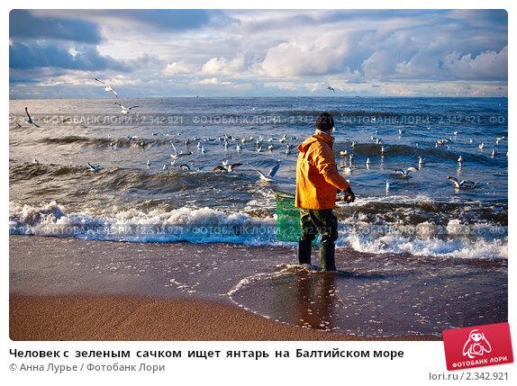 Купить «Человек с  зеленым  сачком  ищет  янтарь  на  Балтийском море», фото № 2342921, снято 3 января 2011 г. (c) Анна Лурье / Фотобанк Лори