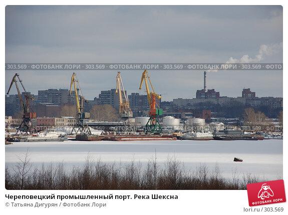Череповецкий промышленный порт. Река Шексна, фото № 303569, снято 8 марта 2008 г. (c) Татьяна Дигурян / Фотобанк Лори