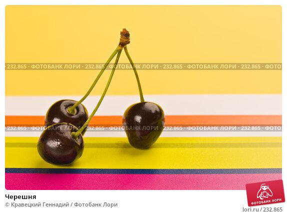 Купить «Черешня», фото № 232865, снято 13 июля 2005 г. (c) Кравецкий Геннадий / Фотобанк Лори