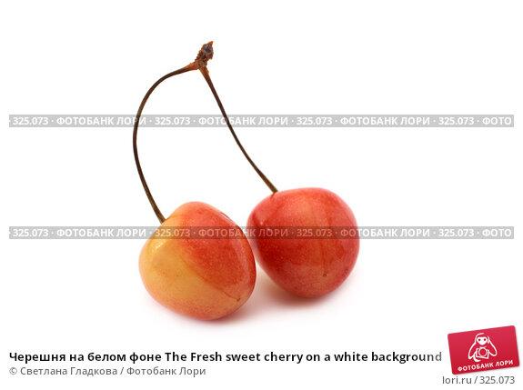 Черешня на белом фоне The Fresh sweet cherry on a white background, фото № 325073, снято 8 июня 2008 г. (c) Cветлана Гладкова / Фотобанк Лори