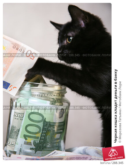 Черная кошка кладет деньги в банку, фото № 288345, снято 9 апреля 2008 г. (c) Морозова Татьяна / Фотобанк Лори
