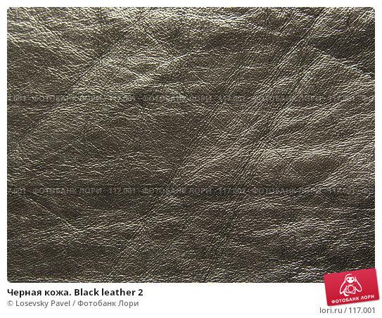 Черная кожа. Black leather 2, фото № 117001, снято 7 марта 2006 г. (c) Losevsky Pavel / Фотобанк Лори