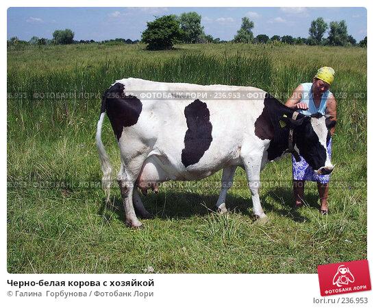 Черно-белая корова с хозяйкой, фото № 236953, снято 26 мая 2017 г. (c) Галина  Горбунова / Фотобанк Лори
