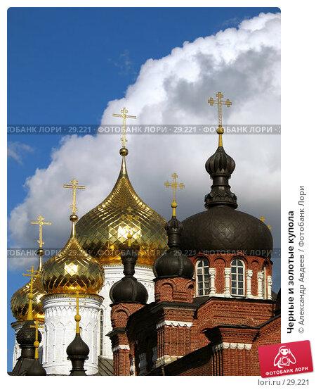 Черные и золотые купола, фото № 29221, снято 23 июля 2006 г. (c) Александр Авдеев / Фотобанк Лори
