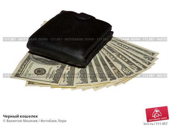 Черный кошелек, фото № 111957, снято 22 ноября 2006 г. (c) Валентин Мосичев / Фотобанк Лори