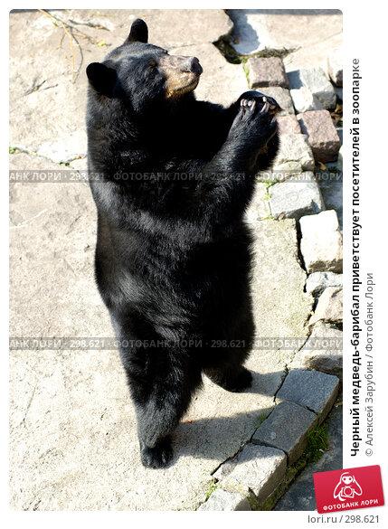 Черный медведь-барибал приветствует посетителей в зоопарке, фото № 298621, снято 22 сентября 2007 г. (c) Алексей Зарубин / Фотобанк Лори