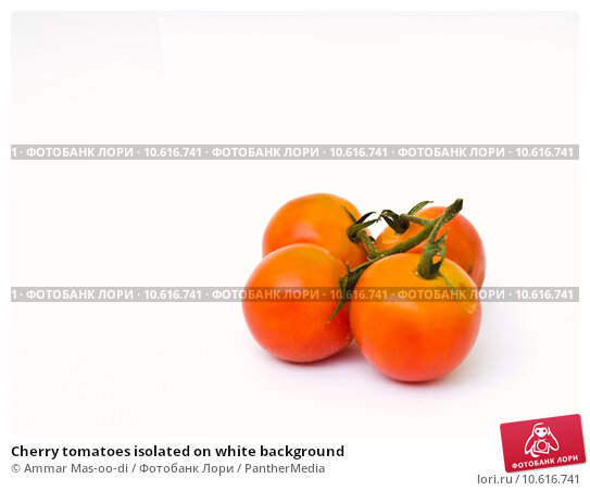 Cherry tomatoes isolated on white background. Стоковое фото, фотограф Ammar Mas-oo-di / PantherMedia / Фотобанк Лори