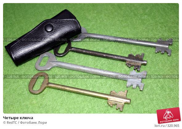 Купить «Четыре ключа», фото № 320965, снято 12 июня 2008 г. (c) RedTC / Фотобанк Лори
