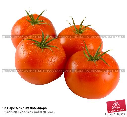 Четыре мокрых помидора, фото № 118333, снято 14 октября 2007 г. (c) Валентин Мосичев / Фотобанк Лори
