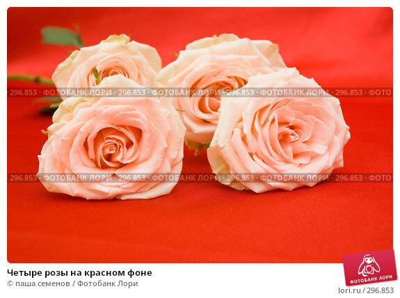 Четыре розы на красном фоне, фото № 296853, снято 29 апреля 2008 г. (c) паша семенов / Фотобанк Лори