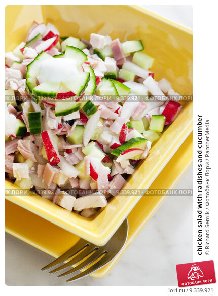 Купить «chicken salad with radishes and cucumber», фото № 9339921, снято 16 июня 2019 г. (c) PantherMedia / Фотобанк Лори