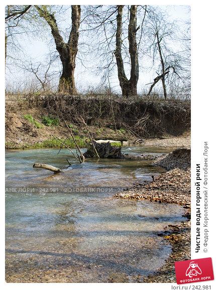 Чистые воды горной реки, фото № 242981, снято 4 апреля 2008 г. (c) Федор Королевский / Фотобанк Лори
