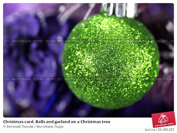 Купить «Christmas card. Balls and garland on a Christmas tree», фото № 29189257, снято 21 декабря 2015 г. (c) Евгений Ткачёв / Фотобанк Лори