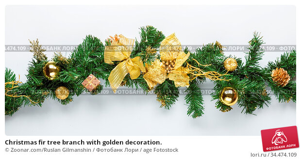 Christmas fir tree branch with golden decoration. Стоковое фото, фотограф Zoonar.com/Ruslan Gilmanshin / age Fotostock / Фотобанк Лори