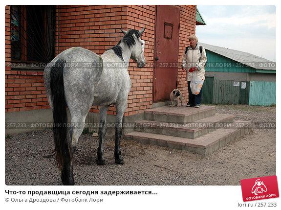 Что-то продавщица сегодня задерживается..., фото № 257233, снято 9 мая 2006 г. (c) Ольга Дроздова / Фотобанк Лори