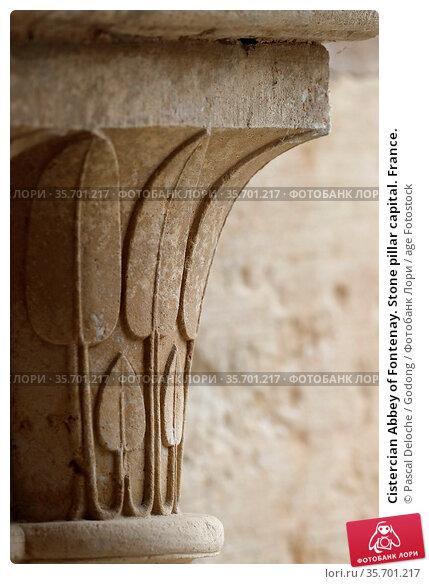 Cistercian Abbey of Fontenay. Stone pillar capital. France. Стоковое фото, фотограф Pascal Deloche / Godong / age Fotostock / Фотобанк Лори