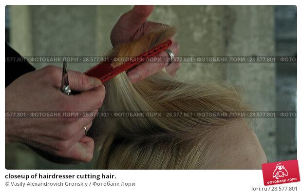 Купить «closeup of hairdresser cutting hair.», фото № 28577801, снято 25 июня 2018 г. (c) Vasily Alexandrovich Gronskiy / Фотобанк Лори