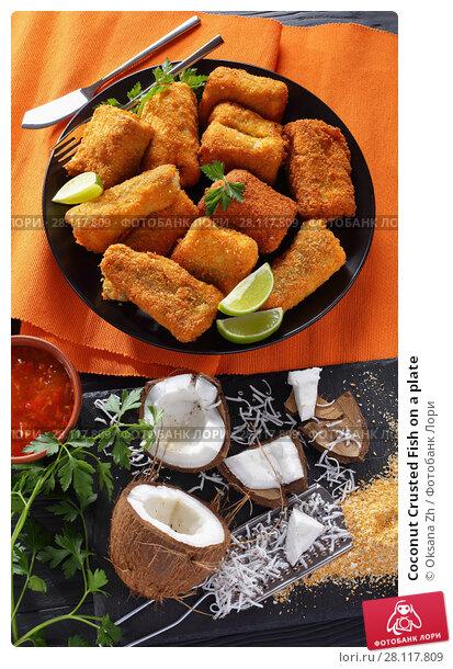 Купить «Coconut Crusted Fish on a plate», фото № 28117809, снято 23 февраля 2018 г. (c) Oksana Zh / Фотобанк Лори