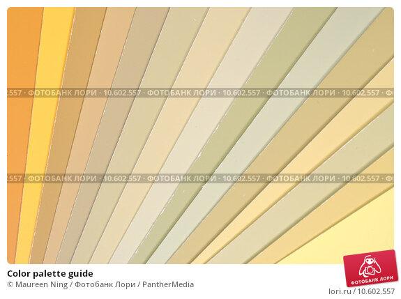 Color palette guide. Стоковое фото, фотограф Maureen Ning / PantherMedia / Фотобанк Лори