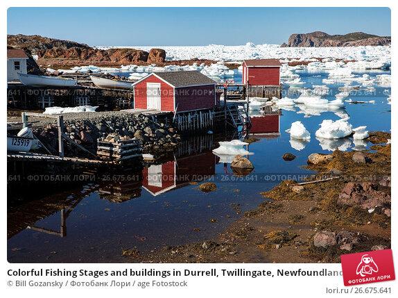 Купить «Colorful Fishing Stages and buildings in Durrell, Twillingate, Newfoundland, Canada.», фото № 26675641, снято 30 мая 2017 г. (c) age Fotostock / Фотобанк Лори