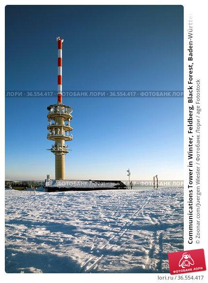 Communications Tower in Winter, Feldberg, Black Forest, Baden-Württemberg... Стоковое фото, фотограф Zoonar.com/Juergen Wiesler / age Fotostock / Фотобанк Лори