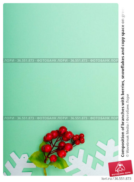 Composition of branches with berries, snowflakes and copy space on green background. Стоковое фото, агентство Wavebreak Media / Фотобанк Лори