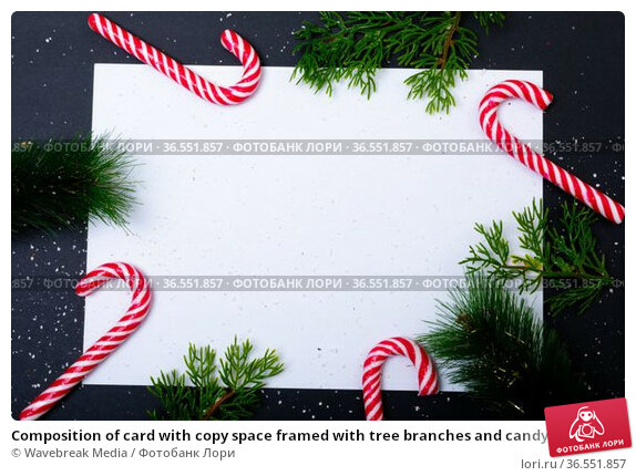 Composition of card with copy space framed with tree branches and candy canes on black background. Стоковое фото, агентство Wavebreak Media / Фотобанк Лори