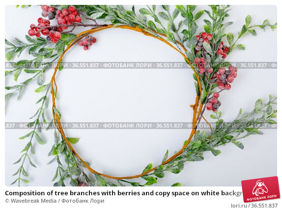 Composition of tree branches with berries and copy space on white background. Стоковое фото, агентство Wavebreak Media / Фотобанк Лори