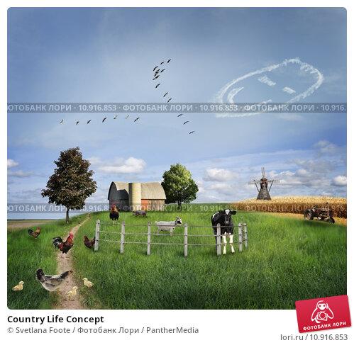 Купить «Country Life Concept», фото № 10916853, снято 27 мая 2019 г. (c) PantherMedia / Фотобанк Лори