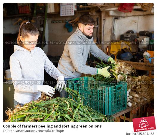 Couple of farmers peeling and sorting green onions. Стоковое фото, фотограф Яков Филимонов / Фотобанк Лори