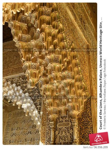 Court of the Lions, Alhambra Palace, Unesco World Heritage Site, ... Стоковое фото, фотограф Frederic Soreau / age Fotostock / Фотобанк Лори