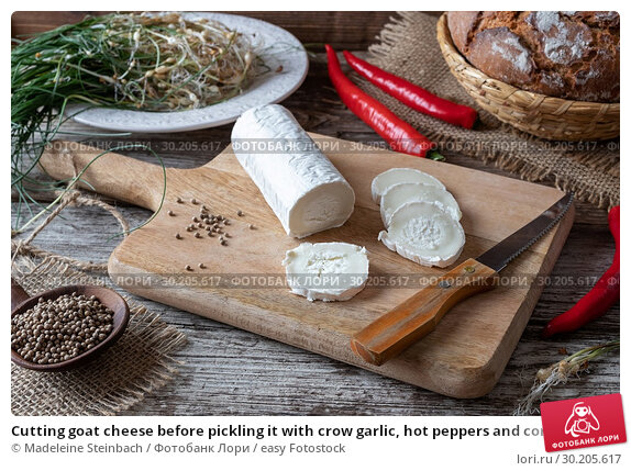 Купить «Cutting goat cheese before pickling it with crow garlic, hot peppers and coriander seeds.», фото № 30205617, снято 19 февраля 2019 г. (c) easy Fotostock / Фотобанк Лори