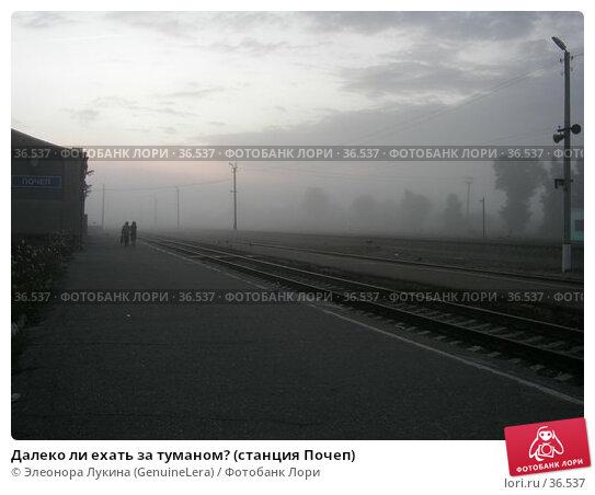 Далеко ли ехать за туманом? (станция Почеп), фото № 36537, снято 27 апреля 2017 г. (c) Элеонора Лукина (GenuineLera) / Фотобанк Лори