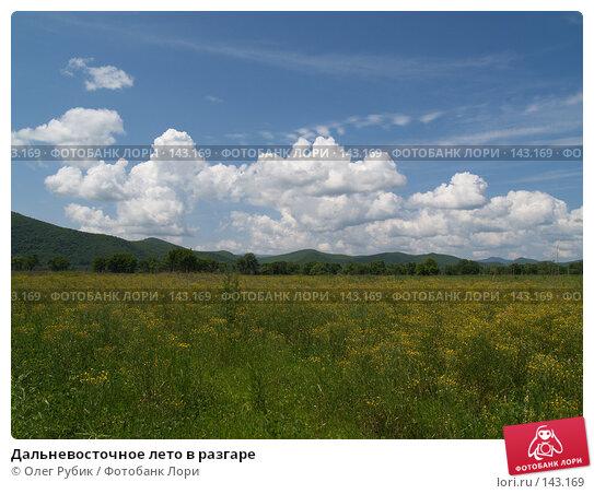Дальневосточное лето в разгаре, фото № 143169, снято 2 июля 2007 г. (c) Олег Рубик / Фотобанк Лори