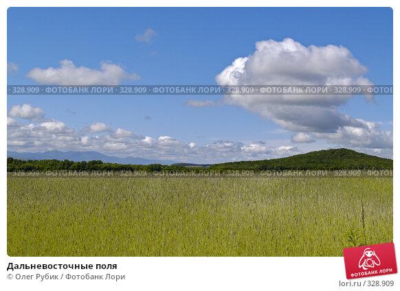 Дальневосточные поля, фото № 328909, снято 13 июня 2008 г. (c) Олег Рубик / Фотобанк Лори