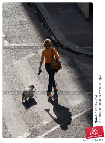 Дама с собачкой, фото № 194373, снято 18 июня 2007 г. (c) Юрий Синицын / Фотобанк Лори