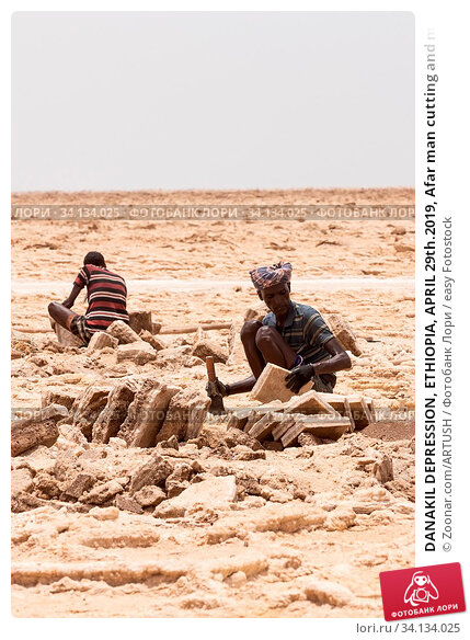 Купить «DANAKIL DEPRESSION, ETHIOPIA, APRIL 29th.2019, Afar man cutting and mining salt bricks (slabs) in primitive tools at salt desert in the Danakil depression...», фото № 34134025, снято 3 июля 2020 г. (c) easy Fotostock / Фотобанк Лори