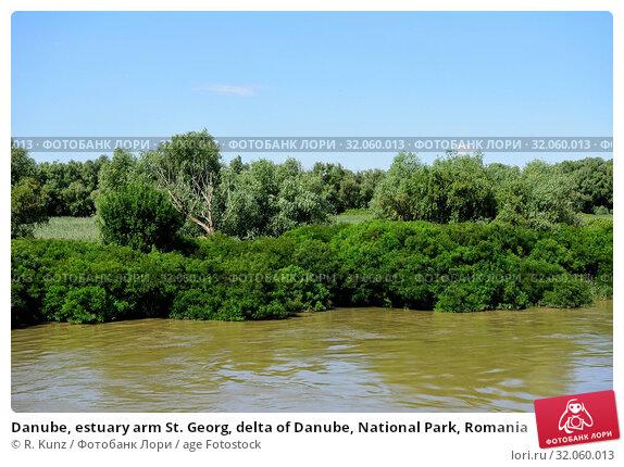 Danube, estuary arm St. Georg, delta of Danube, National Park, Romania. Стоковое фото, фотограф R. Kunz / age Fotostock / Фотобанк Лори