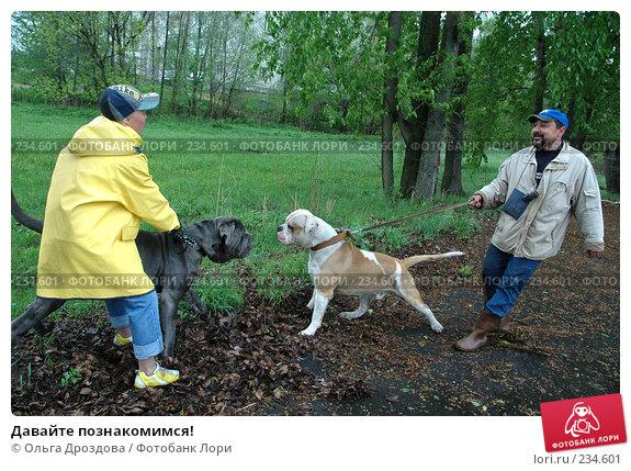 Купить «Давайте познакомимся!», фото № 234601, снято 20 мая 2005 г. (c) Ольга Дроздова / Фотобанк Лори