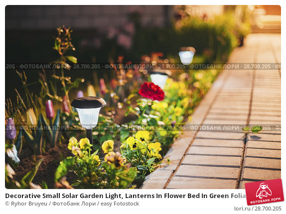 Купить «Decorative Small Solar Garden Light, Lanterns In Flower Bed In Green Foliage. Garden Design. Solar Powered Lamps In Row.», фото № 28700205, снято 17 июня 2016 г. (c) easy Fotostock / Фотобанк Лори