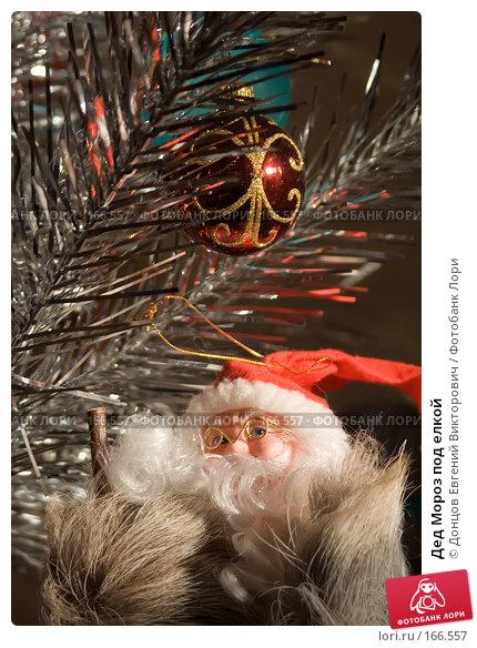 Дед Мороз под елкой, фото № 166557, снято 5 января 2008 г. (c) Донцов Евгений Викторович / Фотобанк Лори