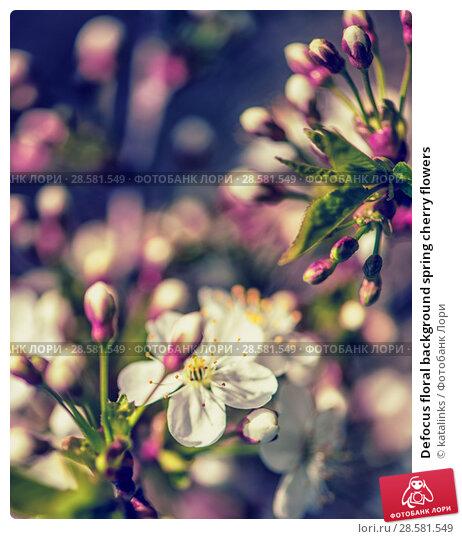 Купить «Defocus floral background spring cherry flowers», фото № 28581549, снято 17 апреля 2017 г. (c) katalinks / Фотобанк Лори