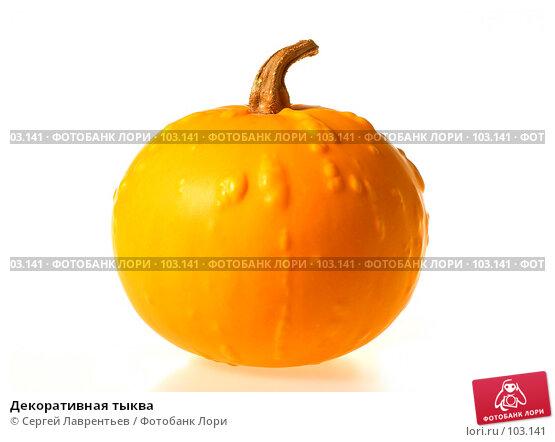 Декоративная тыква, фото № 103141, снято 22 октября 2016 г. (c) Сергей Лаврентьев / Фотобанк Лори