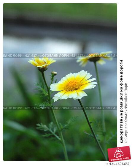 уровень громкости желтые цветы у дорогои приготовить