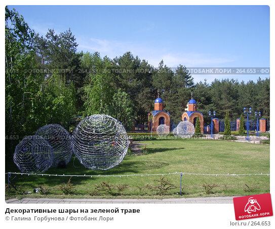 Декоративные шары на зеленой траве, фото № 264653, снято 25 апреля 2007 г. (c) Галина  Горбунова / Фотобанк Лори